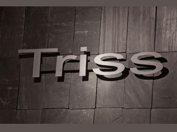triss2013